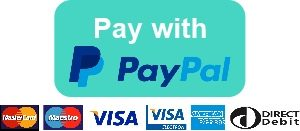Pay with paypal large